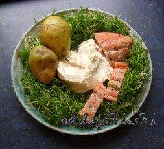 ☕ Rezept: Stremel-Lachs, Birne, Kresse mit Frischkäse Kulturmagazin 8ung.info Elke Wilkenstein