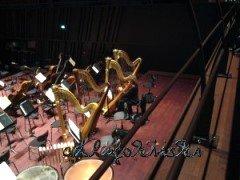 fast leerer Orchestergraben