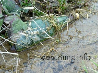 ☼ Wetter am 7. April: Überwinterte Flaschenpost im Graben Kulturmagazin 8ung.info Elke Wilkenstein