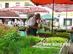☛ Kirchweih in Pegnitz – vom Krenfleisch bis zum Wäschekorb | Kulturmagazin 8ung.info
