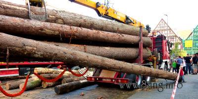 ☼ Tag des Waldes – Holzduft schwebt über der Innenstadt von Kirchheim | Kulturmagazin 8ung.info