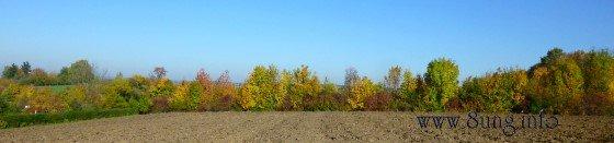 ☼ Wetter am 21. Oktober: Sonniges Herbstwetter mit bunten Blättern Kulturmagazin 8ung.info Elke Wilkenstein