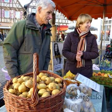 ✿ Heimische Kiwis auf dem Kirchheimer November-Wochenmarkt | Kulturmagazin 8ung.info