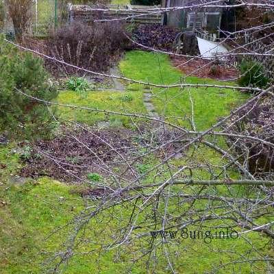 Garten am 26. Dezember 2011