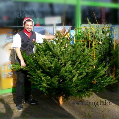 ☼ Weihnachten 2012 im Klee! Ostern 2013 im Schnee! | Kulturmagazin 8ung.info