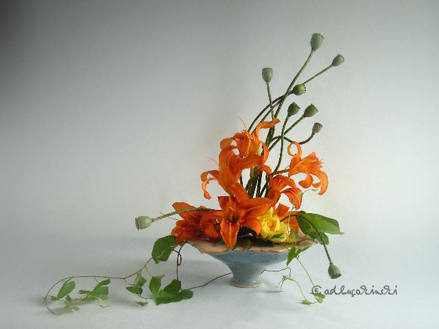 ✿ Bild des Tages: Taglilien mit Mohnkapseln und Ackerwinde Kulturmagazin 8ung.info Elke Wilkenstein