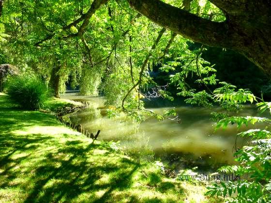 ☼ Bild des Tages: Wetter am 6. September 2013 - es grünt so grün Kulturmagazin 8ung.info Elke Wilkenstein