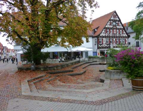 ☼ Bild des Tages: Wetter am 12.Oktober 2013 - gefallene Blätter | Kulturmagazin 8ung.info
