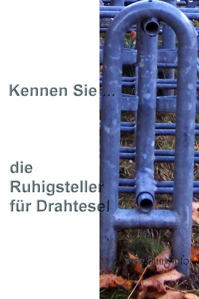 ❢  2. Rätsel für UmdieEckeDenker: Ruhigsteller Kulturmagazin 8ung.info Gesine Bodenteich