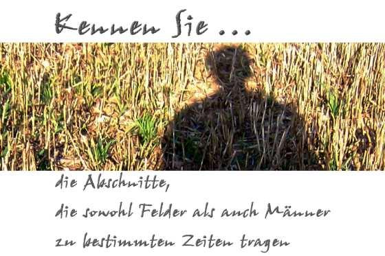 ❢  1. Rätsel für UmdieEckeDenker: Abschnitte | Kulturmagazin 8ung.info