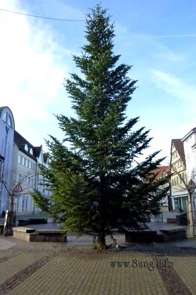 Weihnachtsbaum in Kirchheim unter Teck am 22.Dezember 2013