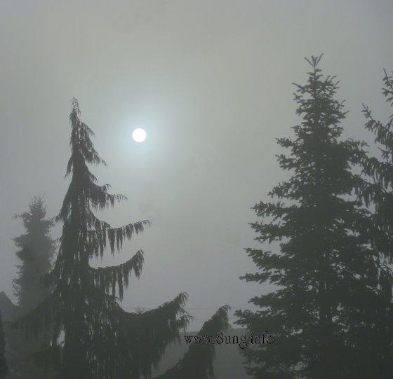 ☼ Bild des (Sonn)Tages: Wetter im Januar 2014 – Sonne hinter Nebel | Kulturmagazin 8ung.info