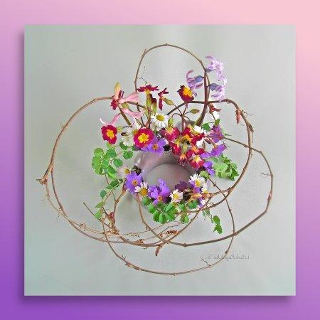 ✿ Blumengesteck aus dem Garten - Primeln, Hyazinthen, Gänseblümchen | Kulturmagazin 8ung.info