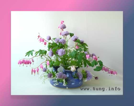 ✿ Bild des Tages: Gartenblumen zum Muttertag | Kulturmagazin 8ung.info