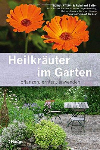 ✍ Ratgeber-Tipp: Heilkräuter im Garten pflanzen, ernten, anwenden Kulturmagazin 8ung.info Elke Wilkenstein