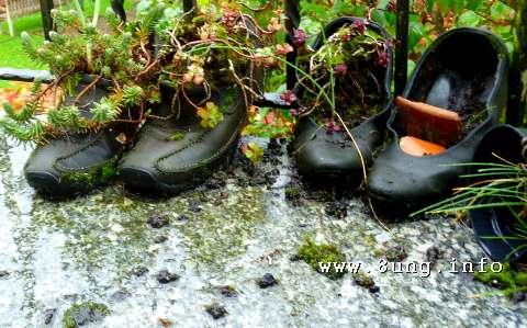 ☼ Vollmondwetter im Oktober 2014: Regen, ja - warm, ja | Kulturmagazin 8ung.info