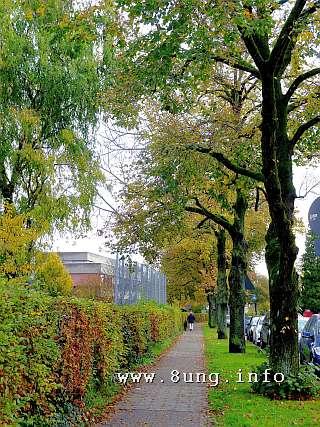 ☼ Wetterprognose bei Vollmond – November 2014 | Kulturmagazin 8ung.info