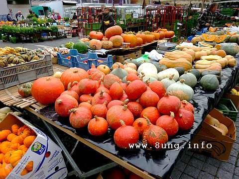 w.kuerbis.markt (3)