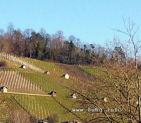 ☼ Wetter im Januar 2015 - Märzensonne | Kulturmagazin 8ung.info