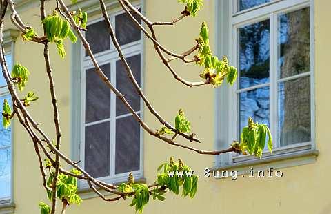 ☼ Wetter im April 2015 – typisches Aprilwetter | Kulturmagazin 8ung.info