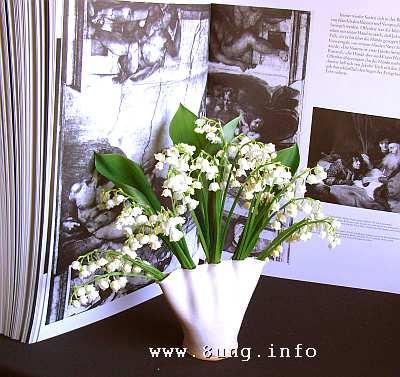 Maiglöckchen in de Vase, Schwarz/Weiß-Buch