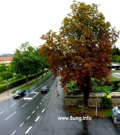 ☼ Wetter im August 2015 – 1 Tag vor Vollmond | Kulturmagazin 8ung.info