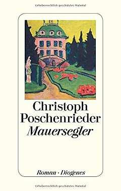 ✍ Buchtipp: Mauersegler - Knaller im letzten Lebensabschnitt | Kulturmagazin 8ung.info