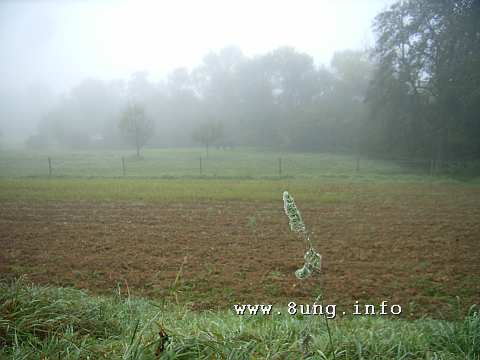 ☼ Wetter am Oktober-Vollmond 2015: Nebel bis Sonne | Kulturmagazin 8ung.info