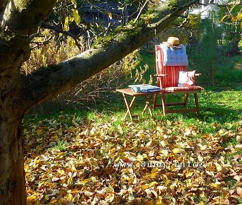 ☼ Wetter am 8. November 2015 – Büro im Garten | Kulturmagazin 8ung.info