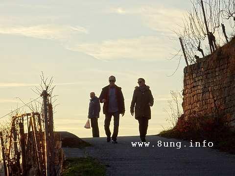 Spaziergänger im Esslinger Weinberg in der Abendsonne