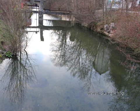 Kahle Bäume spiegeln sich im Wasser