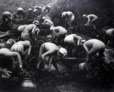 tang-sammlerinnen-japan-mitte-20-jh-foto-iwase-yoshiyuki-copyright-bachmanneckenstein-a