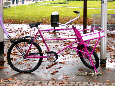 Rosa Fahrrad im Regen, Herbstlaub