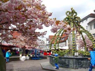 Rosa Blüten und gelg-grüner Osterbrunnen