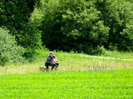 Radfahrer in grüner Natur