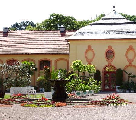 Zitrusgarten Schloss Belvedere