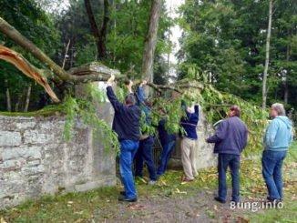 6 Männer, die einen Baum vom Tor heben