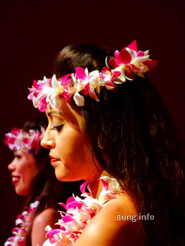 W.hawaii.hula .tanz .musik 60