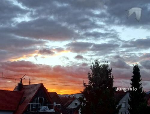 Morgenrot, graue Wolken, Hausdächer