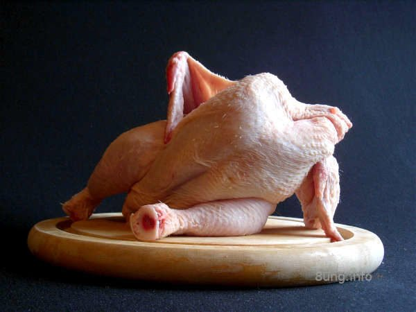 Huhn ohne Kopf
