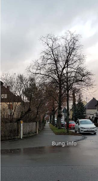 Regennasse Strasse, Autos, Häuser