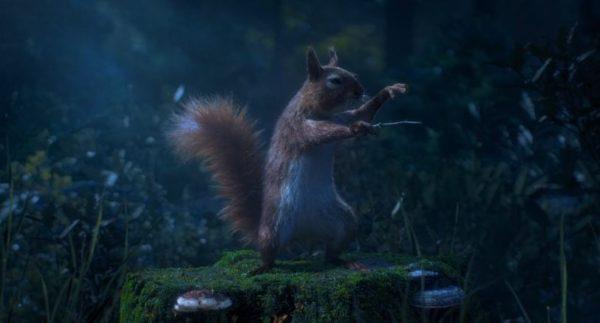 maestro: trickfilm Eichhörnchen als Dirigent