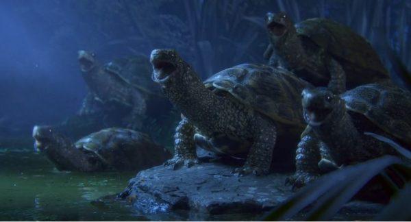 Maestro Trickfilm: Chor der Schildkröten