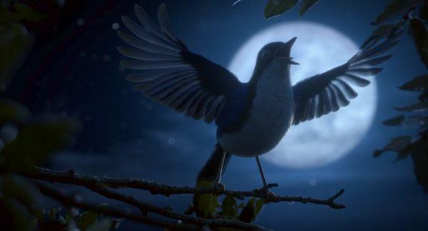 maestro: trickfilm vogel