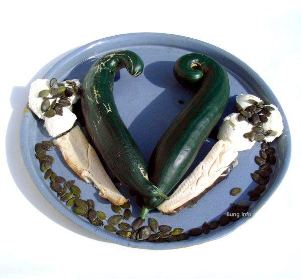 Forelle, Gurke, Kürbiskerne im Frischkäse: Zutaten