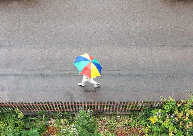 Bunter Regenschirm bei feuchtem Wetter