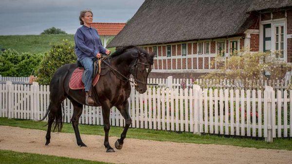 Altes Land: Vera Eckhoff (Iris Berben) trabt heute immer noch gerne mit ihrem stolzen Ostpreußen provokativ über den frisch geharkten Sandweg ihres Nachbarn.