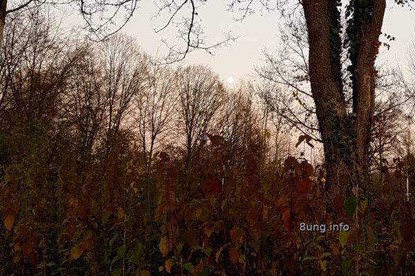 Weter im November - kurz vor Vollmond