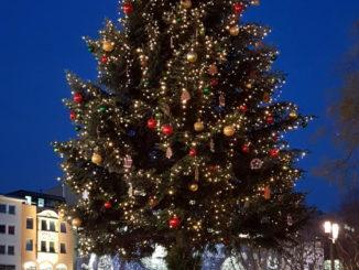 Wetter im Dezember - Weihnachtsbaum und blauer Himmel
