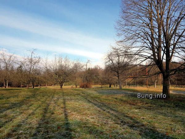 Wetterprognose Februar 2020: Streuobstwiese mit Raureif